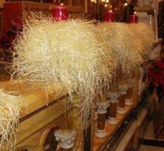 Maltská vianočná gulbiena.