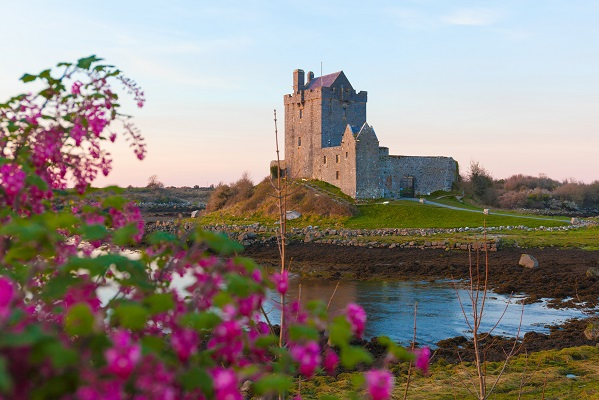 Význam írskeho trojlístka je skutočnou záhadou - známy je už od pradávnej histórie, jeho význam sa však vždy mení.