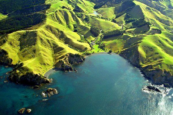 5 právd a 1 lož o Novom Zélande - na Novom Zélande sa chová najviac oviec na osobu na svete!